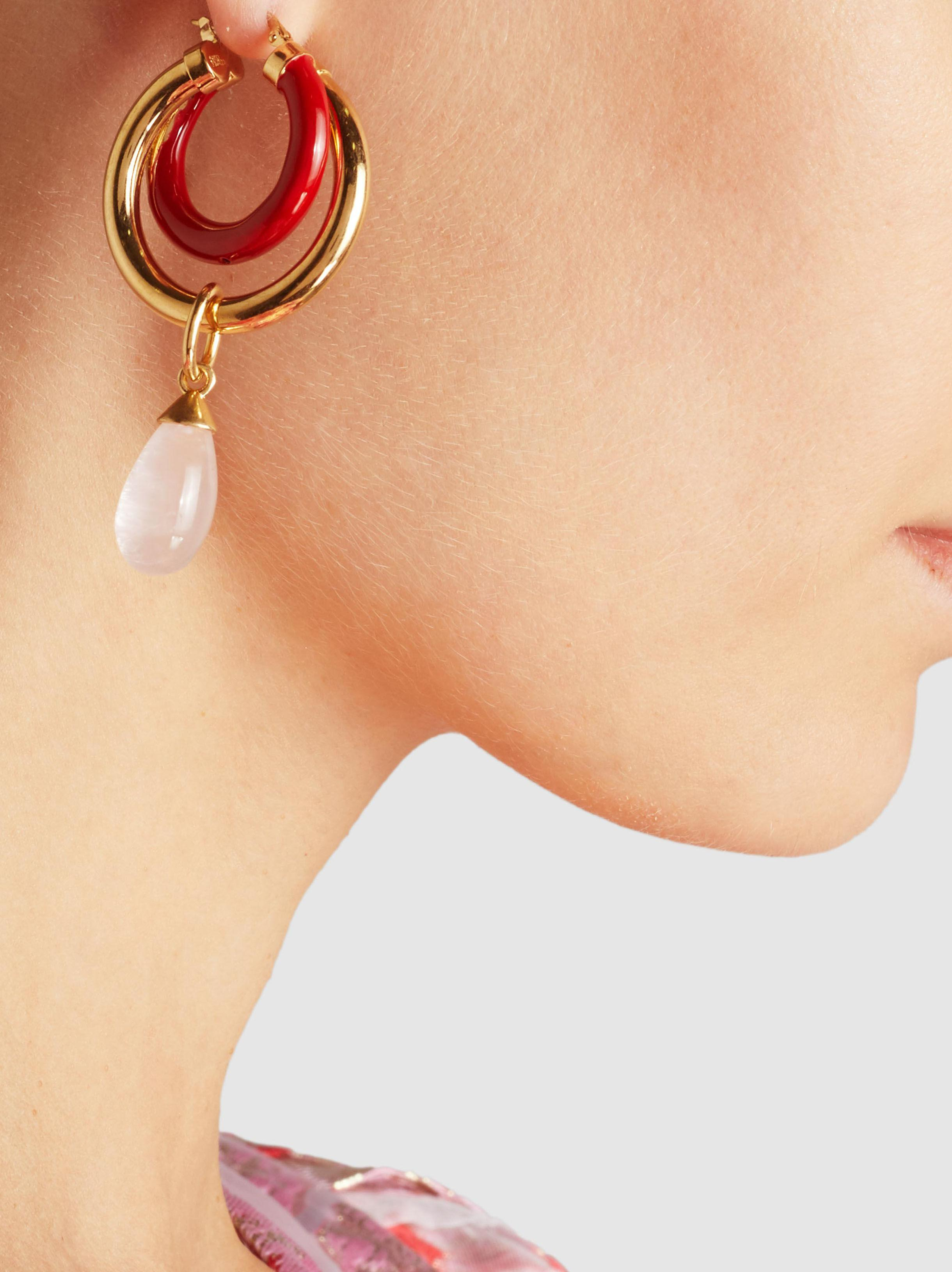 Peter Pilotto Large double-hoop earrings oyhTB0
