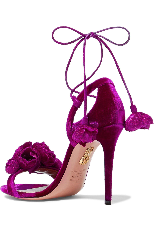 Aquazzura Wild Flower Applique/' Black Velvet Sandals