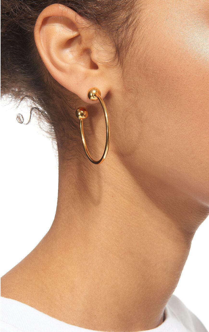 Whistles Large Pierced Hoop Earring in Gold (Metallic)