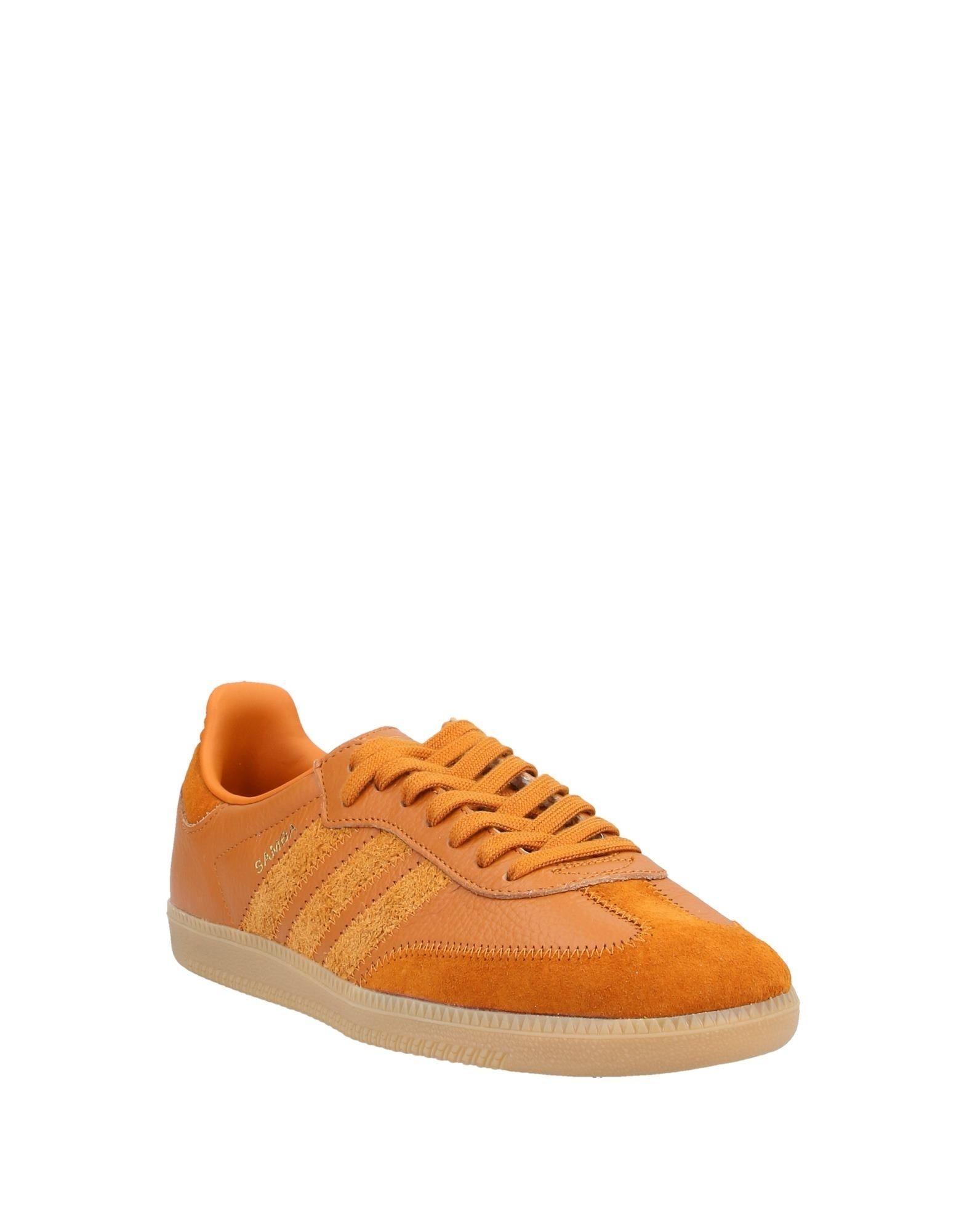 Sneakers & Deportivas adidas Originals de hombre