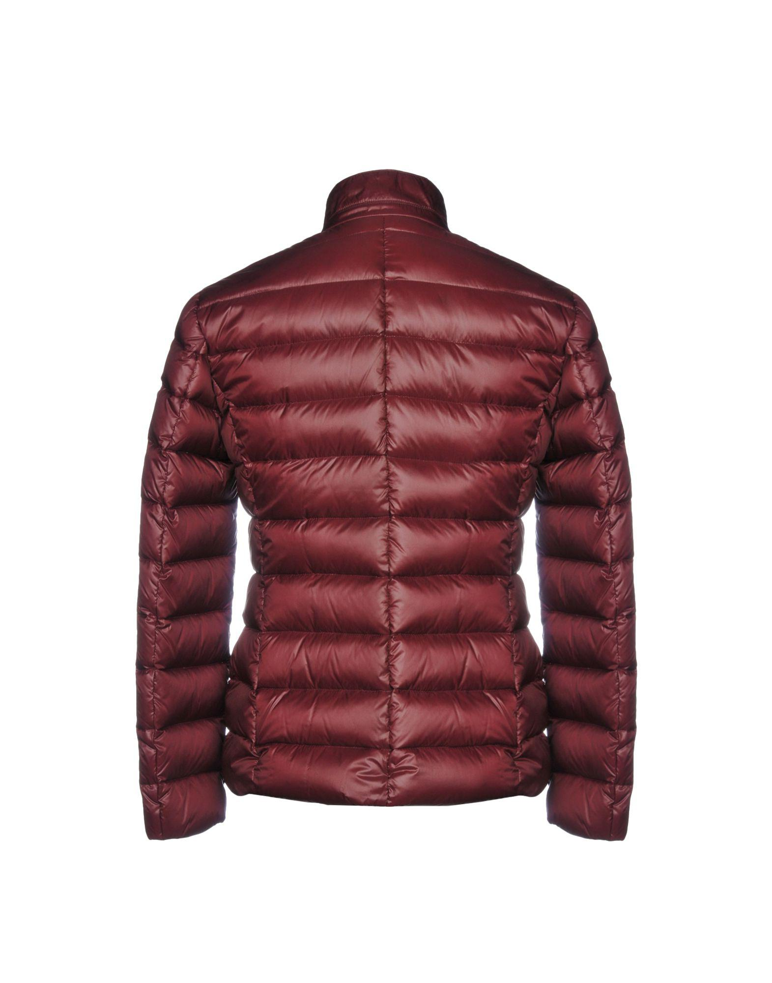 Domenico Tagliente Goose Down Jacket in Maroon (Red) for Men