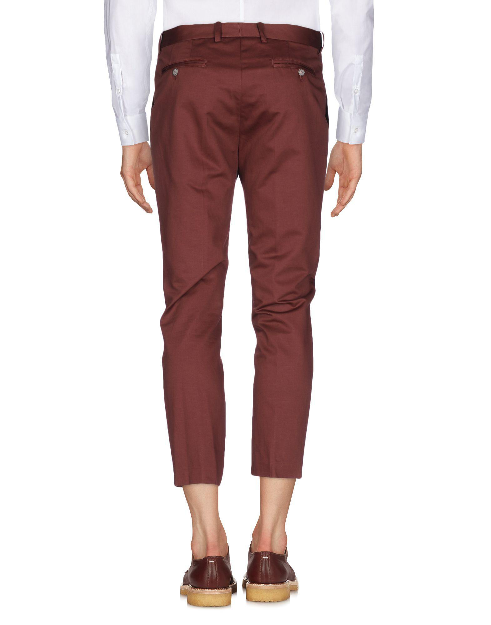 Paolo Pecora Cotton Casual Trouser in Cocoa (Black) for Men