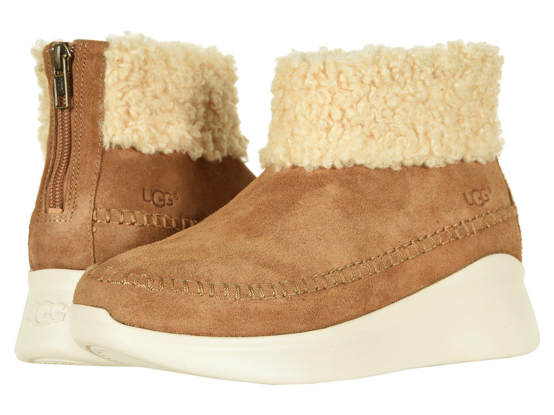 UGG Montrose Sneaker (chestnut) Women's