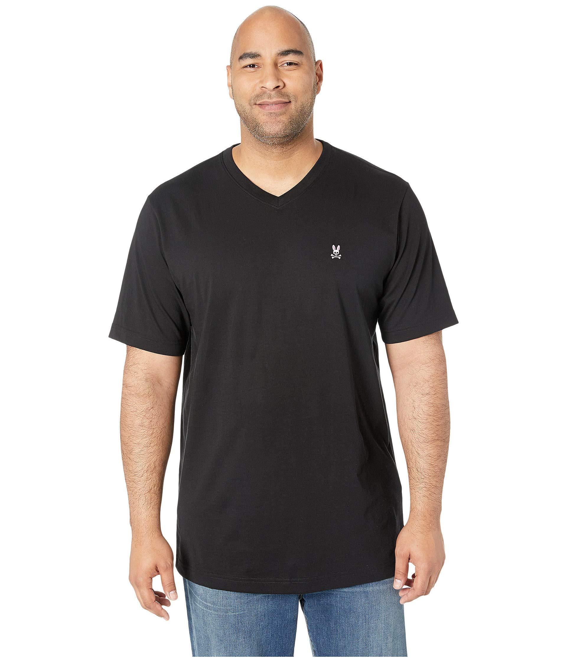 a296b0bfe47 Hanes - Big and Tall Men s 3 Pack V-Neck - Walmart.com