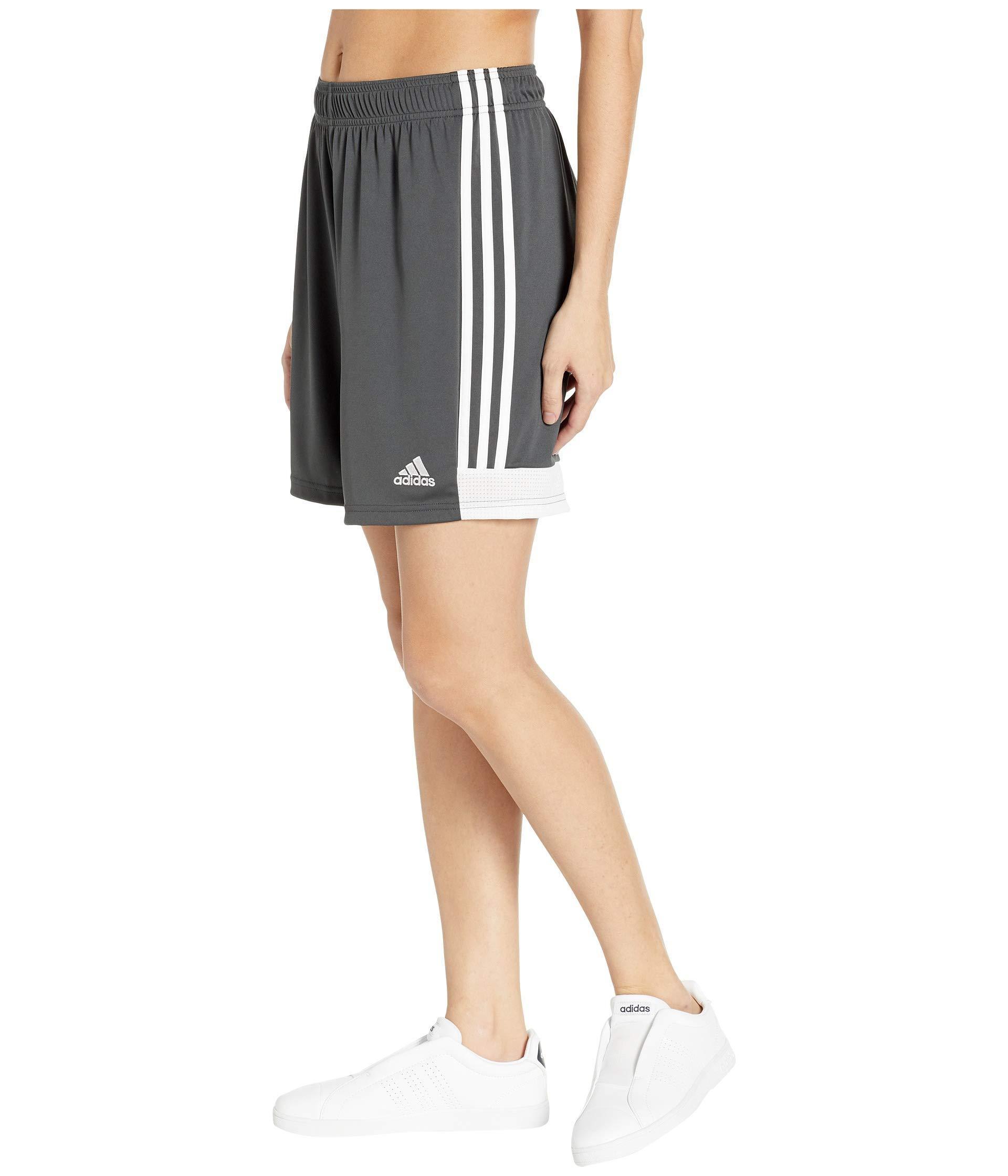 0d5f2873c Lyst - adidas Tastigo '19 Shorts (white/black) Women's Shorts in Gray