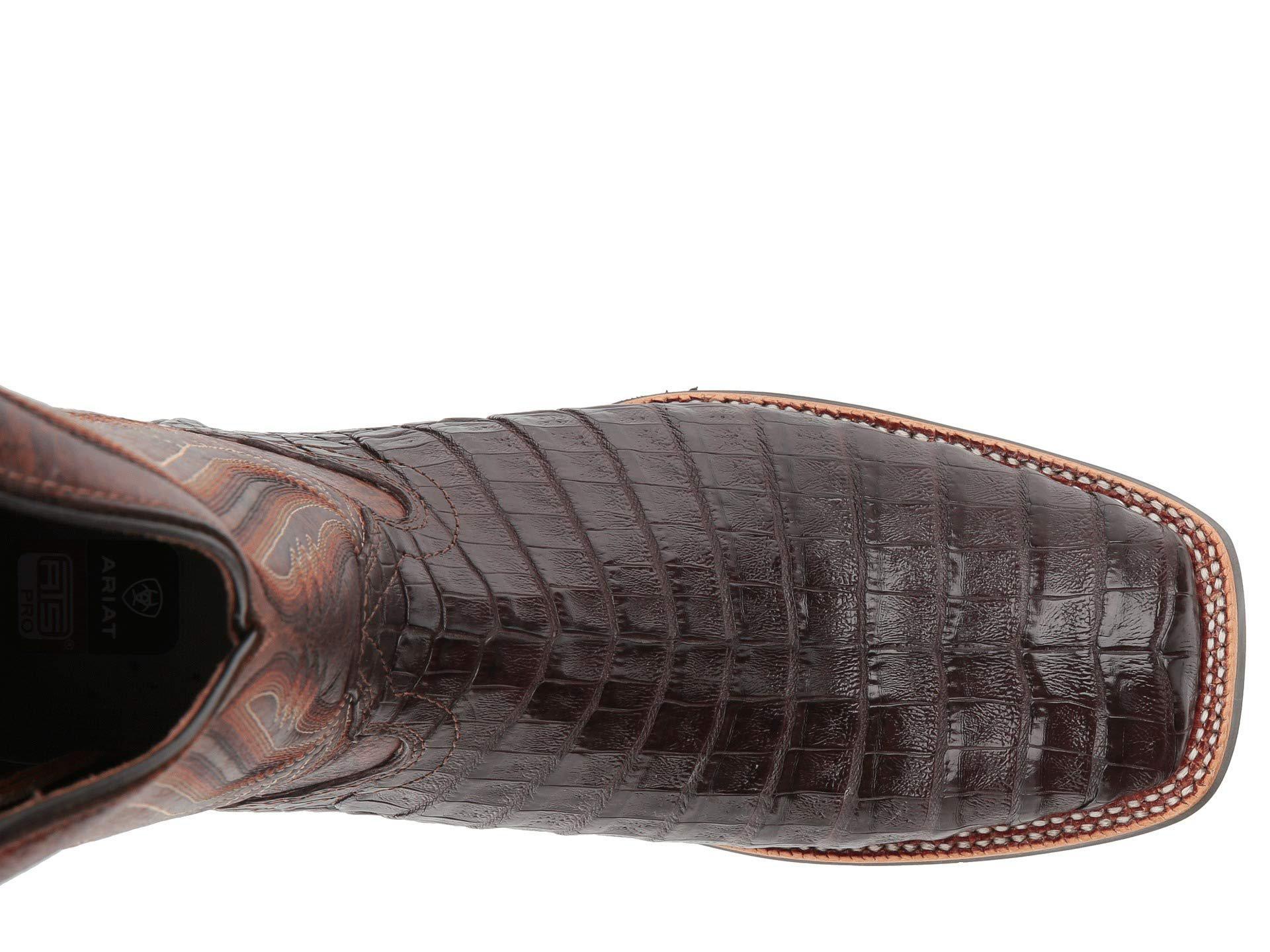 3687b0717aa Men's Brown Double Down (black Caiman Belly/black) Cowboy Boots