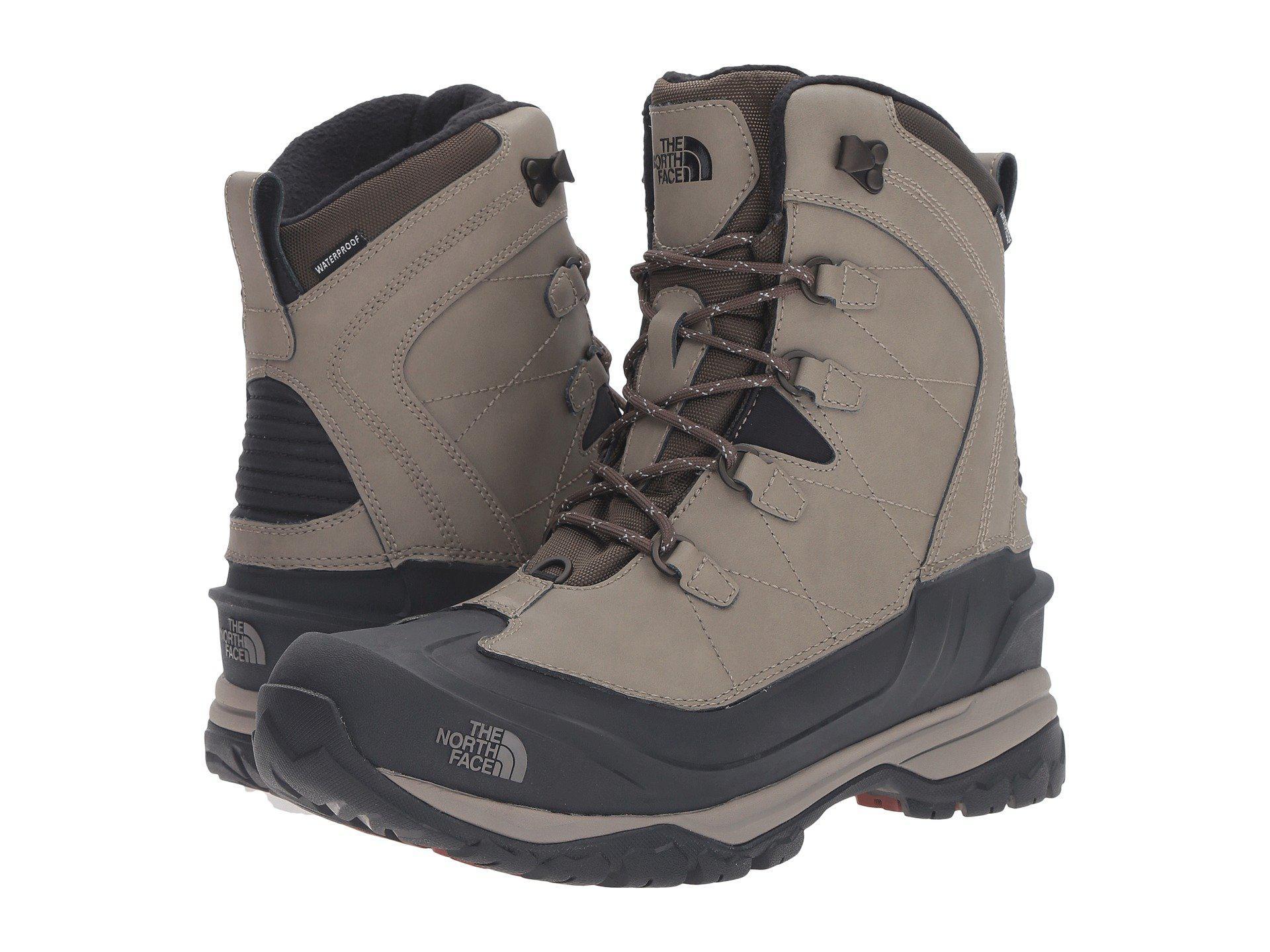 c277c0318 Men's Brown Chilkat Evo
